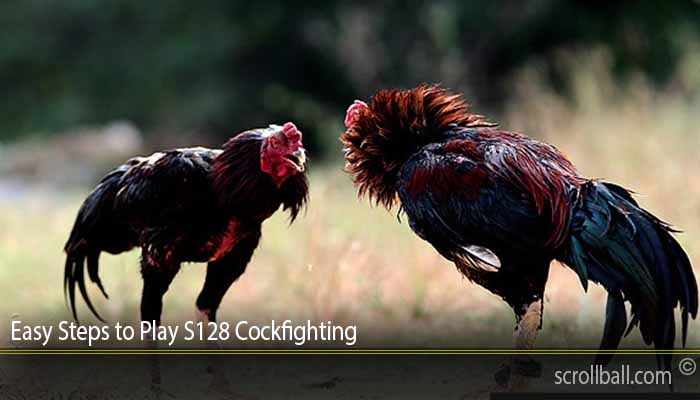 Easy Steps to Play S128 Cockfighting